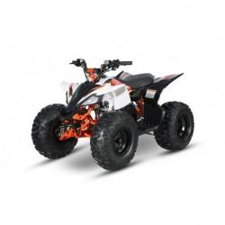 AT125 PREDATOR - MINI QUAD ATV 125cc SEMIAUTOMATICO 4 TEMPI BY KAYO - 1