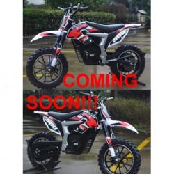 "MINICROSS LION - ELETTRICA 500W 24V minimoto cross ruote 10"" - 1"
